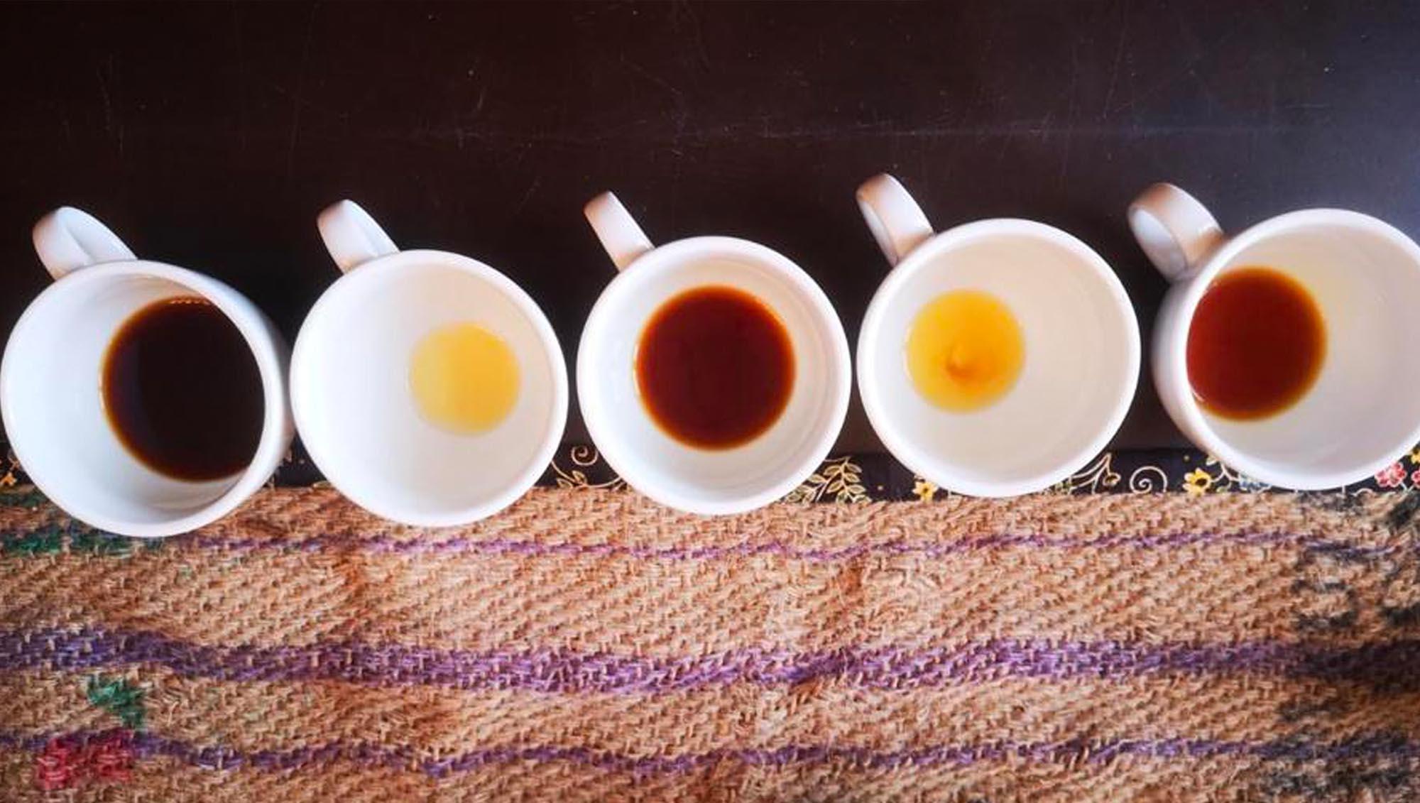 Kaffee-Kontor-Werder-Kaffeeverkostung-Baristakurs
