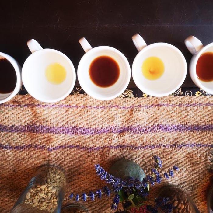 Kaffeeverkostung-Baristaworkshop-Kaffee-Kontor-Werder